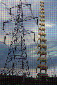 ELEPHANTINE: The pylons would be taller than 15 African elephants