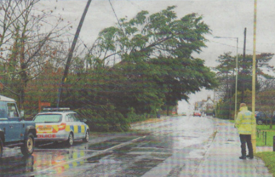 DANGER: In South Street, Whitstable, a tree fell on a power line